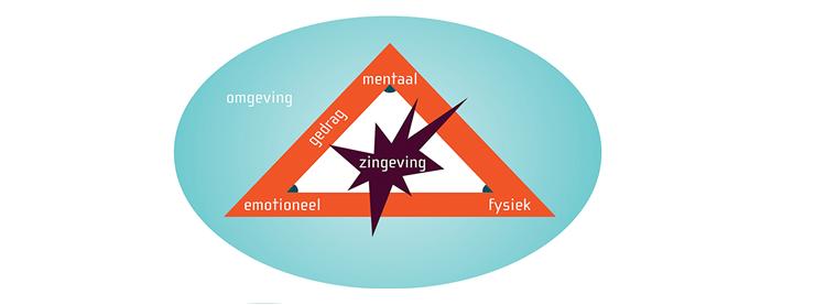 Stermodel van de zes ontwikkelingsniveaus_Blankestijn & Partners
